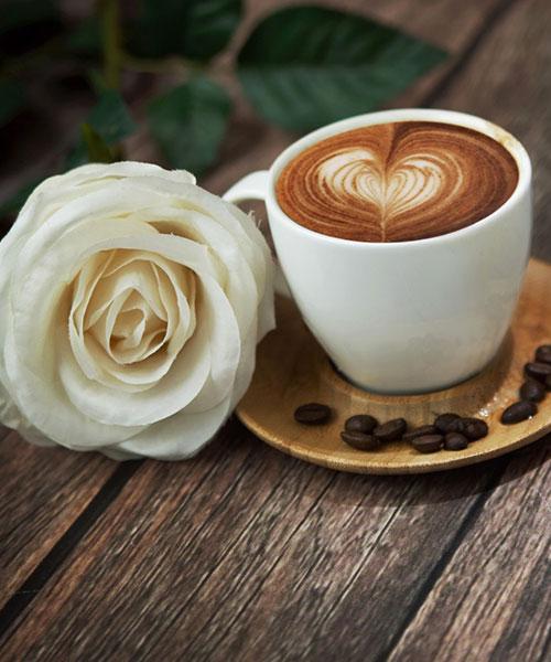 _macchina-da-caffè-professionale-casa-parma-reggio-emilia